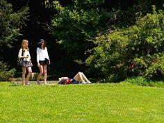 À procura de espaços verdes para aproveitar o tempo livre? Fique a saber quais são os melhores parques e jardins de Lisboa