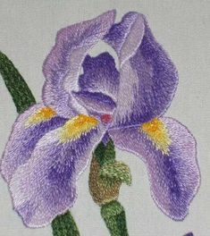 Embroidered Iris – Completed Needle Painting Project – Needle'nThread.com