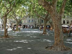 La place aux Herbes Uzès