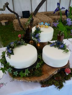 A magical mossy dell wedding cake from Hot Cakes in Edinburgh. Carrot, lemon and chocolate tiers decorated with handmade fondant bluetits, magical mushrooms and cake pop fly agarics. Presented on a slice of oak and all watched over by a wise old chocolate owl sitting in the branch.