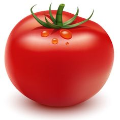 How to Illustrate a Tomato in Adobe Illustrator - Illustrator Tutorials - Vectorboom