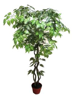 120 cm-es dekorációs fa Herbs, Plants, Herb, Plant, Planets, Medicinal Plants