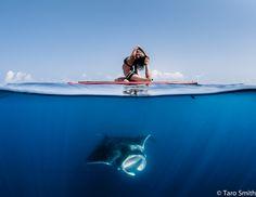 prAna Ambassador Amy Ippoliti wearing the Lahari Top $55 and Tobago Bottoms $59. See Amy's underwater adventure at www.prana.com #surf #sup #swim