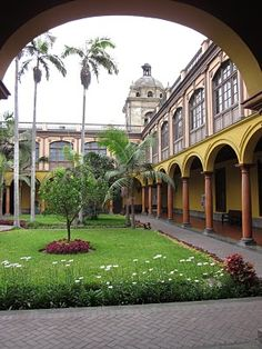 On the grounds of the oldest university in South America. In Lima