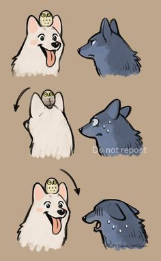 Cute Animal Drawings, Kawaii Drawings, Cute Drawings, Arte Furry, Furry Art, Art Manga, Anime Art, Cartoon Cartoon, Fluffy Animals