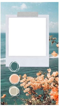 Polaroid Picture Frame, Polaroid Pictures, Polaroid Frame Png, Polaroids, Aesthetic Backgrounds, Aesthetic Wallpapers, Polaroid Template, Instagram Frame Template, Photo Collage Template