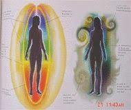 الطاقة الحيوية : البصمات الحيوية فى الجسم
