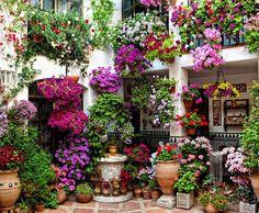Quiero un patio interior así.