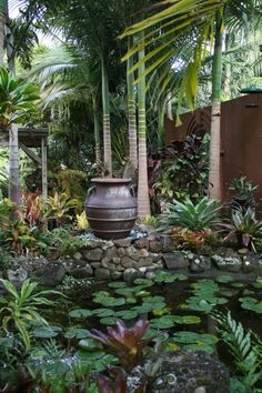 The International Cordyline Society...Asian landscaped...quiet and breathlessly serene.