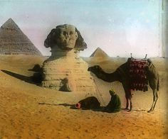 Egypt: Gizeh by Brooklyn Museum, via Flickr