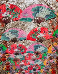 A guide to celebrating the Spring Festival in Shanghai