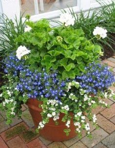 macetas y tan bellas que inspiran los mejores jardines
