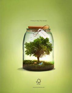 "Forest Stewardship Council ""FSC"" by Akoua Smith, via Behance"