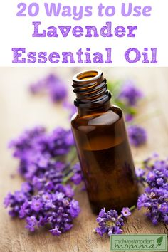 Whether you are looking for a way to soothe a bug bite, calm an earache, make some homemade body products, or just unwind at the end of a busy day, Lavender Essential Oil is a must-have!