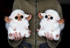 [CUTE] Ne cherchez plus : on a trouvé les peluches les plus mignonnes de la Terre