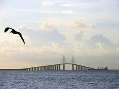 Beautiful start to the week! Might go fishing in Tampa Bay around Sunshine Skyway Bridge, away from the big ships! JP