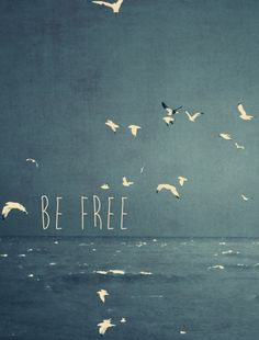 be free inspirational typography words sea birds flight vintage blue waves nature Text art