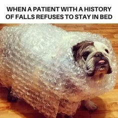 Fall risk ambulated with assistive devices for support.memes That Perfectly Sum Up The Daily Struggles Of Nurse facilities Rn Humor, Medical Humor, Ecards Humor, Pharmacy Humor, Memes Humor, Funny Medical Quotes, Medical Careers, Life Humor, Night Shift Humor