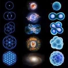 age-of-awakening:  As above,  so below.  Microcosm, macrocosm. Sacred geometry, flower of life, cell division, reflected in the universe.