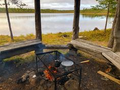 morning Wellness from Lappish Nature tour organised by Lapland Safaris Santa Claus Village, Stuff To Do, Things To Do, Finland Travel, Wildlife Park, Plan Your Trip, Travel Guide, Budget Travel, Amazing Photography