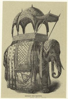 Elephant with trappings. (1856)