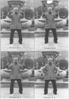 MIT Qigong: The Eight Zhan Zhuang Posts of Yiquan