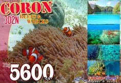 REEFS & WRECKS PACKAGE                  for as low as Php5,600/person 3 days & 2 nights  Be enchanted with Coron Island's lakes, lagoons and beaches and experience seeing the historic sunken ships of World War II with its inhabiting colorful corals & tropical fishes.