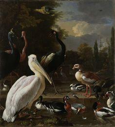 Een pelikaan en ander gevogelte bij een waterbassin, bekend als 'Het drijvend veertje', Melchior d' Hondecoeter, ca. 1680