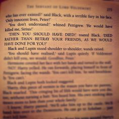 Sirius Black and the moment I realized how much I truly would come to respect him, almost more than anyone else in the series.