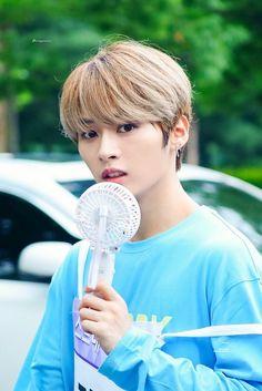 Stray kids Lee Know (Minho) Lee Minho Stray Kids, Lee Know Stray Kids, K Pop, Fanfiction, Wattpad, Man Alive, Lee Min Ho, Baby Photos, Boy Bands