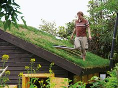 "Column "" Kolonihaveのある暮らし "" 屋上緑化した小屋の屋根"