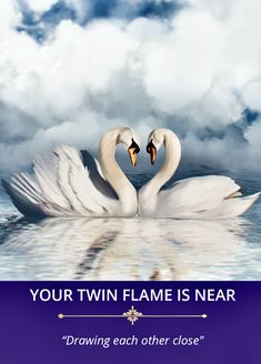 Twin Flame Love Quotes, Twin Flame Reunion, Rumi Love, Archangel Raphael, Angel Guidance, Twin Souls, Babe Quotes, Angel Cards, Oracle Cards