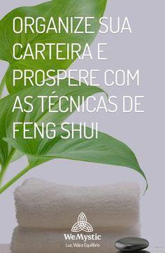 Organize sua carteira e prospere com as técnicas de Feng Shui