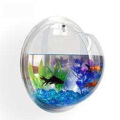 Aquarium Shop, Wall Aquarium, Home Aquarium, Aquarium Lighting, Saltwater Aquarium, Saltwater Tank, Aquarium Design, Fish Tank Wall, Betta Fish Tank