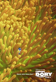 Finding Dory opens on June 17 #HaveYouSeenHer #FindingDory