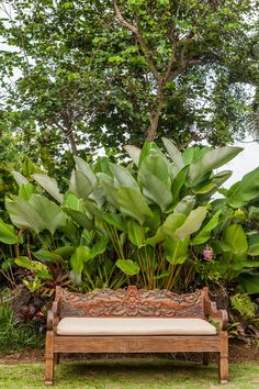 Missing Bali? Use your time at home to create your own Balinese-style alfresco space! Small Tropical Gardens, Tropical Garden Design, Tropical Landscaping, Garden Landscape Design, Outdoor Landscaping, Tropical Plants, Landscape Plans, Bali Garden, Balinese Garden