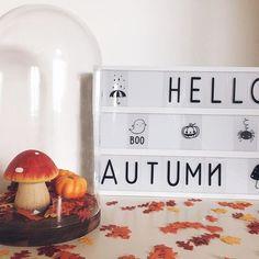 Hello Autumn! 🍄 •  •  •  •  •  •  •  •  #helloautumm #fall #mushroom #pumpkin #leaves #red #yellow #white #dots #letterbox #fun #season #love