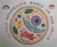 """http://www.etsy.com/shop/Theflossbox    This Etsy seller has the most amazing """"Science"""" embroidery patterns and I love them!"""