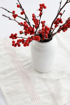 Ilex verticillata - Winterberry.  A deciduous holly that puts on a beautiful show in the winter when the bare branches sport bright red berries.