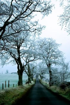 I'd love off a country road just like this someday!