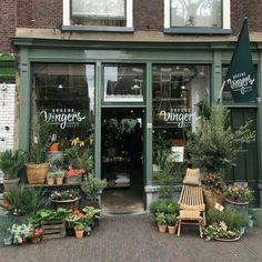 Groene Vingers Pflanzenparadies in Delft Coffee Shop Design, Cafe Design, Store Design, Flower Shop Design, Shop Front Design, Delft, Flower Shop Interiors, Flower Boutique, Tree Shop