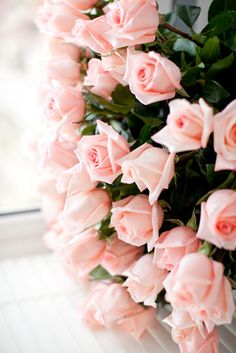 blush roses // Is it weird that I wanna have a wall of roses at my wedding? Completely covered in these pink roses.