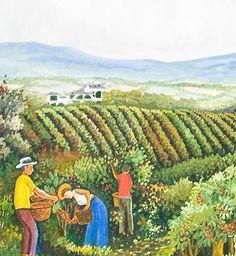 Finca Rosa Blanca Resort, coffee farm plantation and luxurious inn