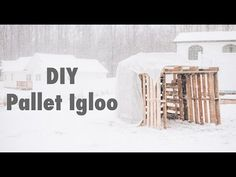 Before/After: Pallet Igloo (Diy Video Tutorial) • 1001 Pallets