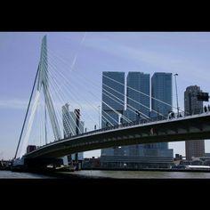Rotterdame İnstagram @dilektuncphotography