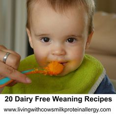 20 Dairy Free Weaning Puree Recipes By Living With Cow's Milk Protein Allergy - CMPA Support Food Blog