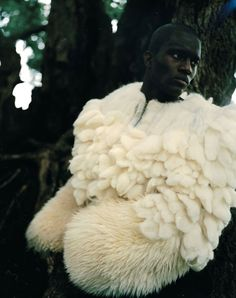 Forest Editorials The element of texture. His coat is giving off a sense of softness and comfort. The texture shown is very pleasingThe element of texture. His coat is giving off a sense of softness and comfort. The texture shown is very pleasing