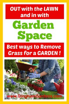 Learn how to transform lawn into garden, includes how to remove grass for a garden bed, how to turn lawn into a vegetable garden, and how to remove grass for a vegetable garden or a flower garden. Flower Garden Plans, Flower Garden Design, Growing Flowers, Planting Flowers, Flower Gardening, How To Remove Grass, Annual Flowers For Shade, Rustic Garden Decor, Best Perennials
