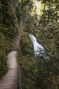Trail to the top of Allerheiligen Waterfall with lots of up and down stairs -- Loved visiting here. At the top of the waterfall is a ruined abbey. Black Forest, Germany.