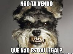 N�o ta vendo que n�o estou legal